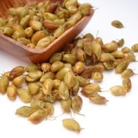 Oven Roasted Fresh Green Chickpeas
